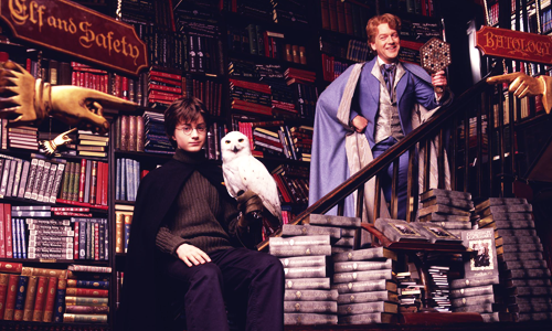 gilderoy-lockhart-and-harry-potter-hogwarts-professors-30368895-500-300