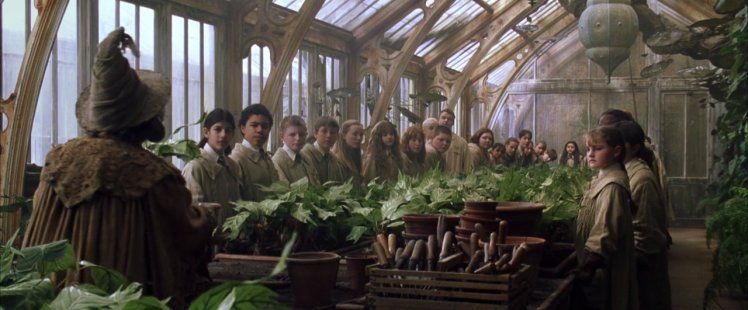 professor_sprout_greenhouse_1